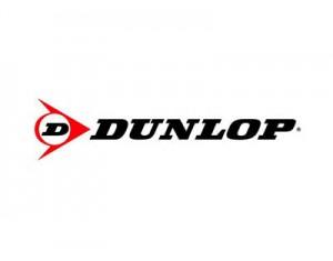 Шины Dunlop – купить в Донецке